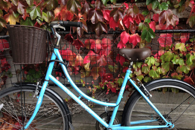 Time for an autumn bike