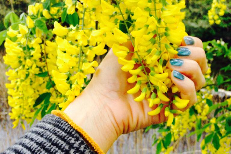 Let's senses grow sharper for May